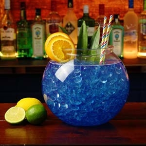 XL Plastic Fishbowl 5 liter