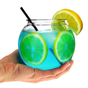 4 Mini Cocktail Fishbowls 568ml